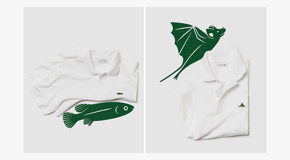 58acf883f3f82 Lacoste Changes Its Logo For the Second Time - Blog | Go Media